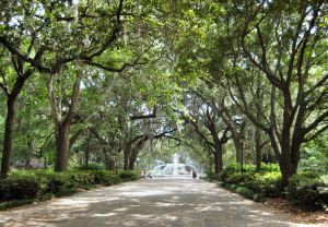 Savannah_Forsyth_Park